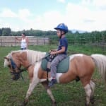 "Příměstký tábor ""Léto s koňmi"" – III. termín"