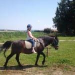 Léto s koňmi – III. termín