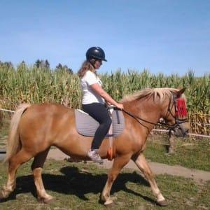 Léto s koňmi - III. termín
