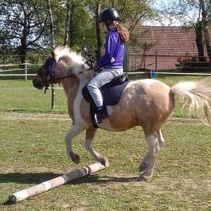 Léto s koňmi - termín: 08. 07. - 12. 07. 2019