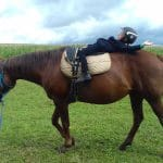 Léto s koňmi – termín: 13. 07. – 17. 07. 2020