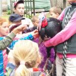 Dětský tábor se zvířaty na statku
