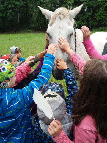 Děti hladí koně